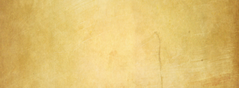parchment_paper_2_by_allocer2009-950x3501